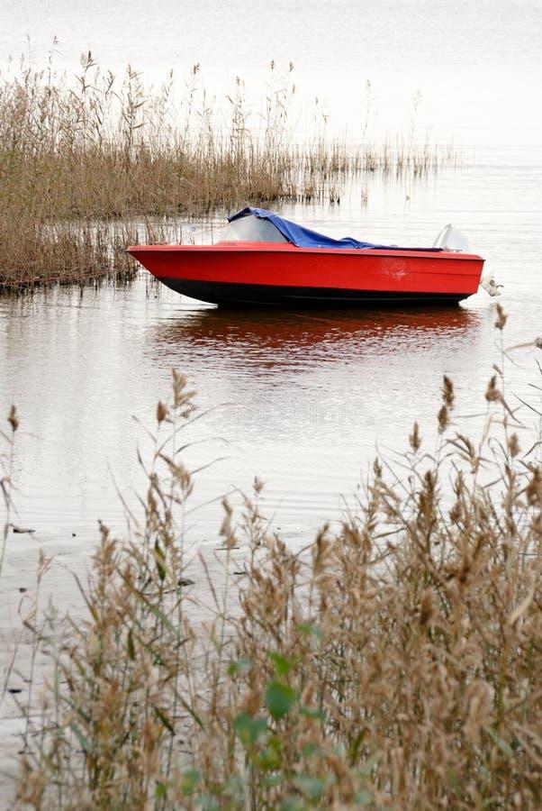 Motorboot en riet op lakeshore in de herfst royalty-vrije stock afbeelding