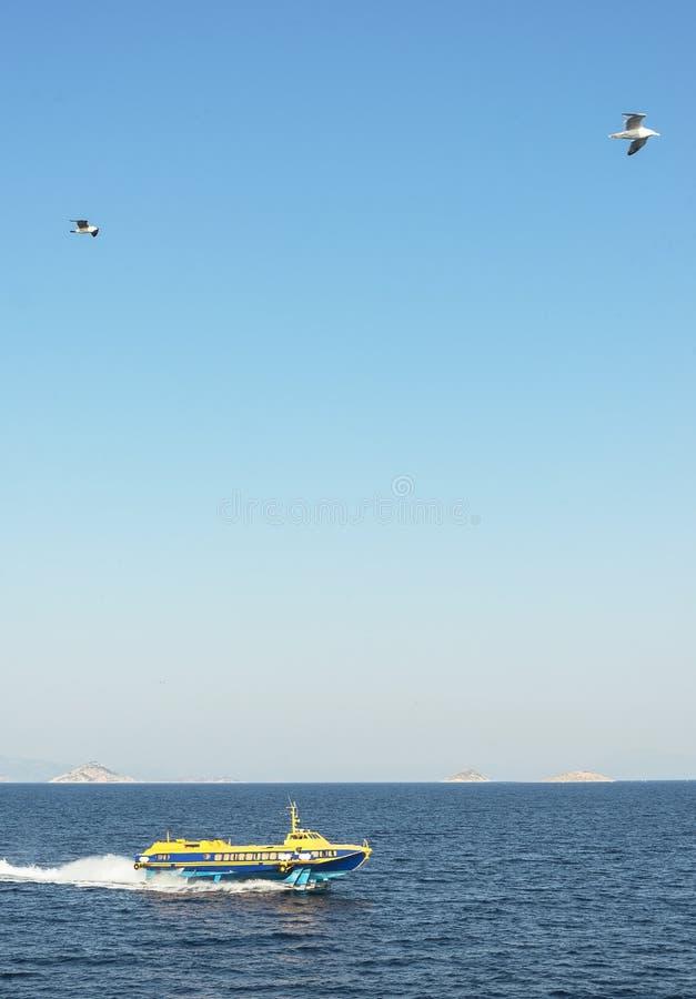 Motorboot op het overzees royalty-vrije stock foto