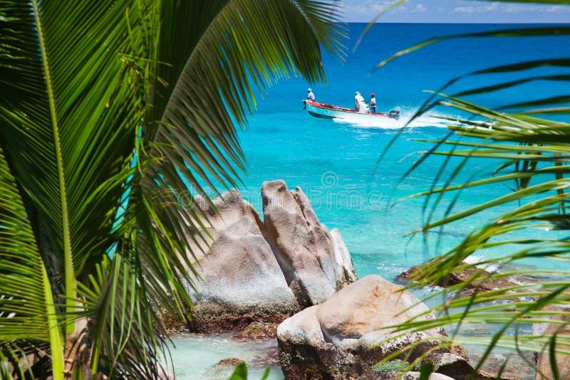 Motorboot tussen palmvarenbladen dat op zee wordt bekeken royalty-vrije stock foto's