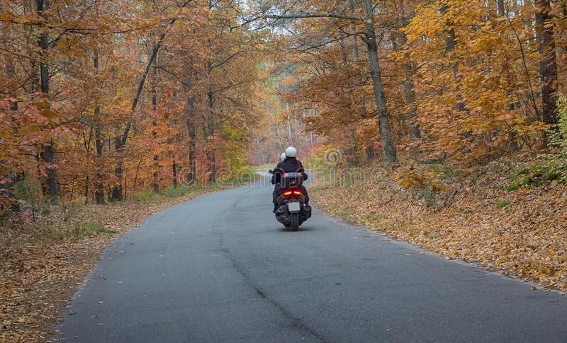 Motorcyclist rides on the road passing through the autumn forest royalty free stock photos