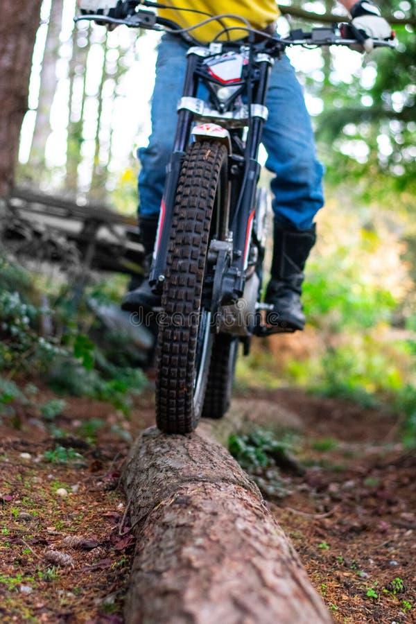 Motorcykelridning i skogen arkivfoton