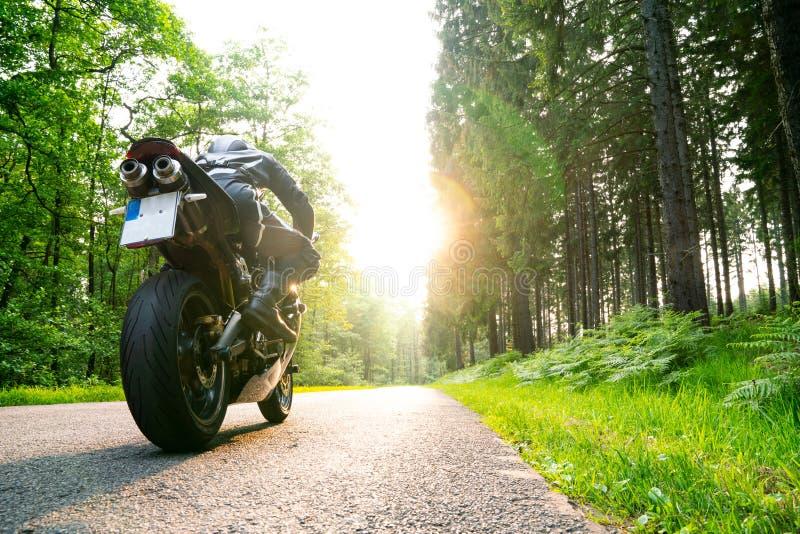 Motorcyklist på skoglandsvägen royaltyfri bild