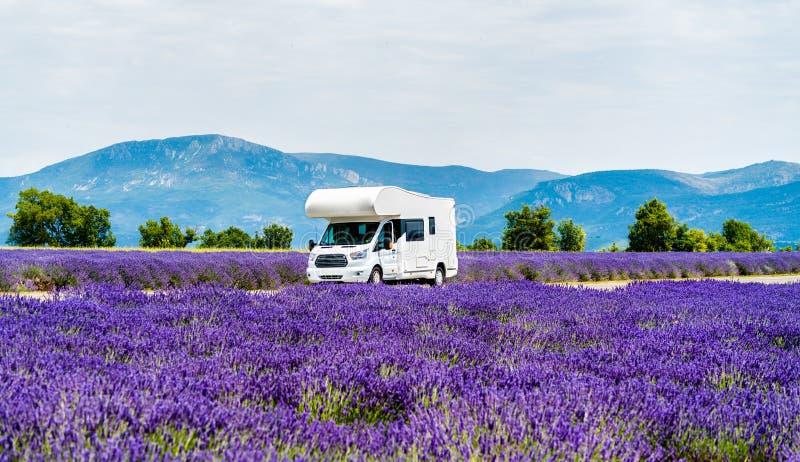 Motorhome i ett lavendelfält i Provence, Frankrike arkivbild