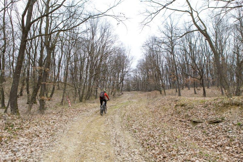 Motorista en bosque foto de archivo libre de regalías