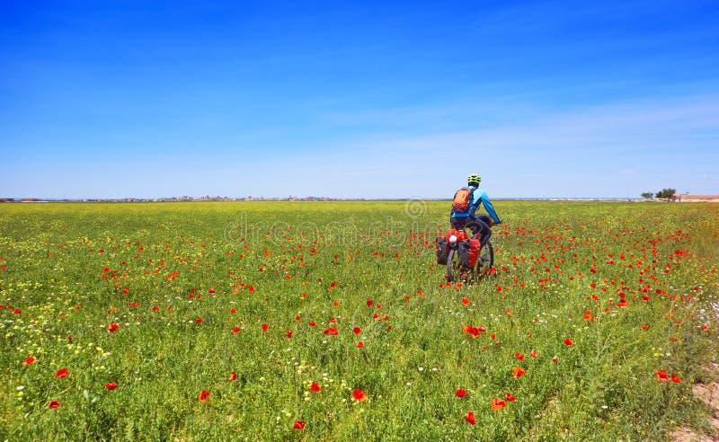 Motorista por Camino de Santiago en bicicleta imagenes de archivo