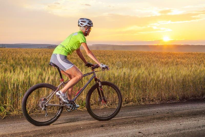 Motorista que monta el camino rural contra puesta del sol fotografía de archivo