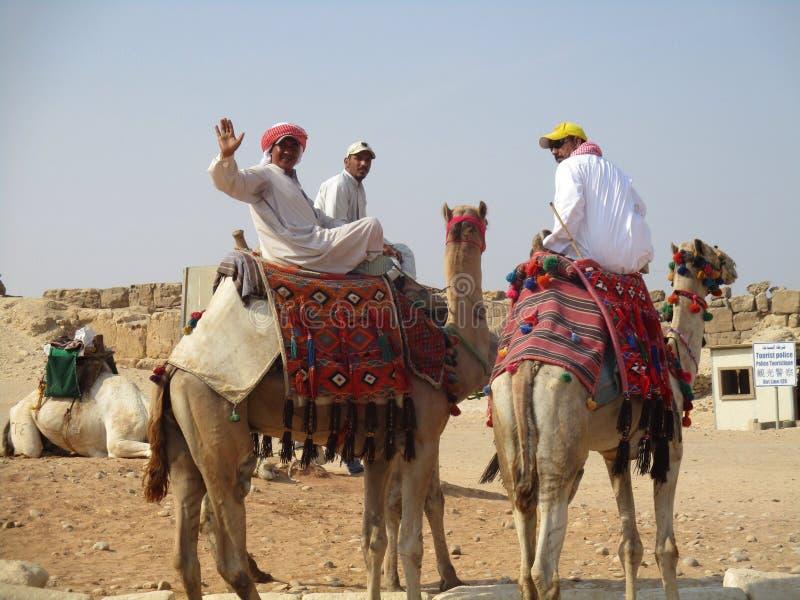 Motoristas do camelo em Giza imagem de stock royalty free