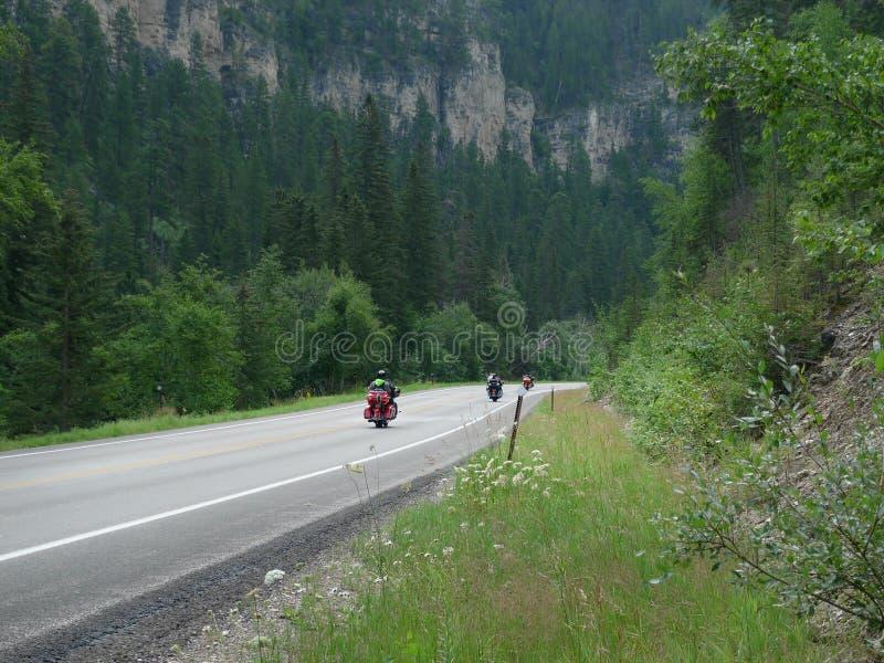 Motorräder auf Spearfish-Schlucht-szenischem Seitenweg im Black Hills, South Dakota lizenzfreie stockbilder