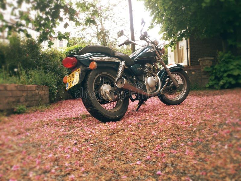 Motorradleitartikel Suzuki-Plünderers gz125 stockfotos