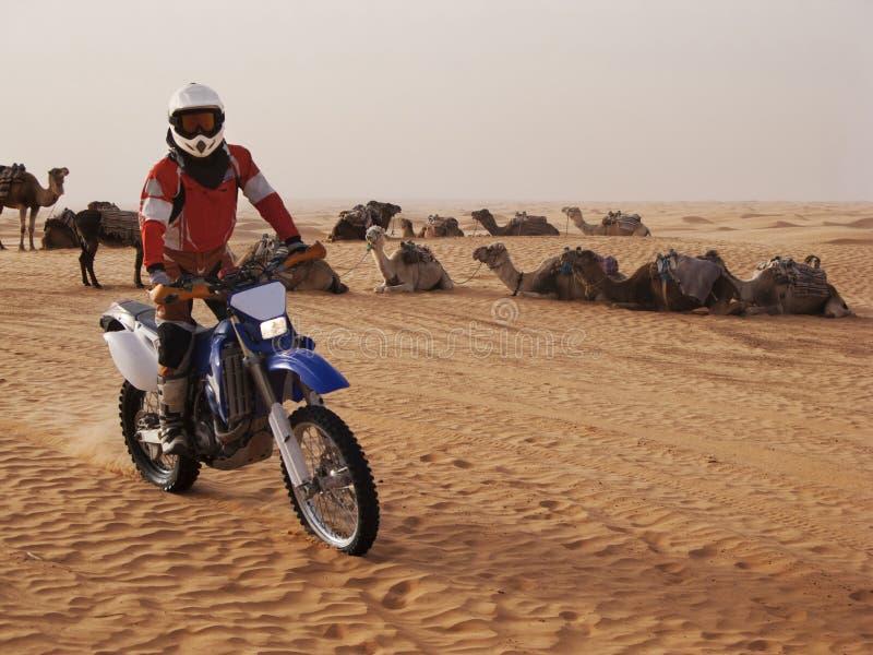 Motorradreiter in der Wüste stockbild