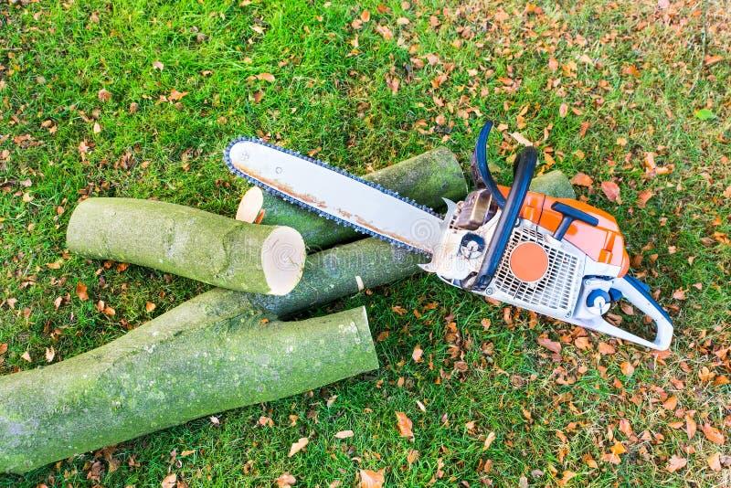 Motosierra con el tronco o la rama de árbol imagenes de archivo