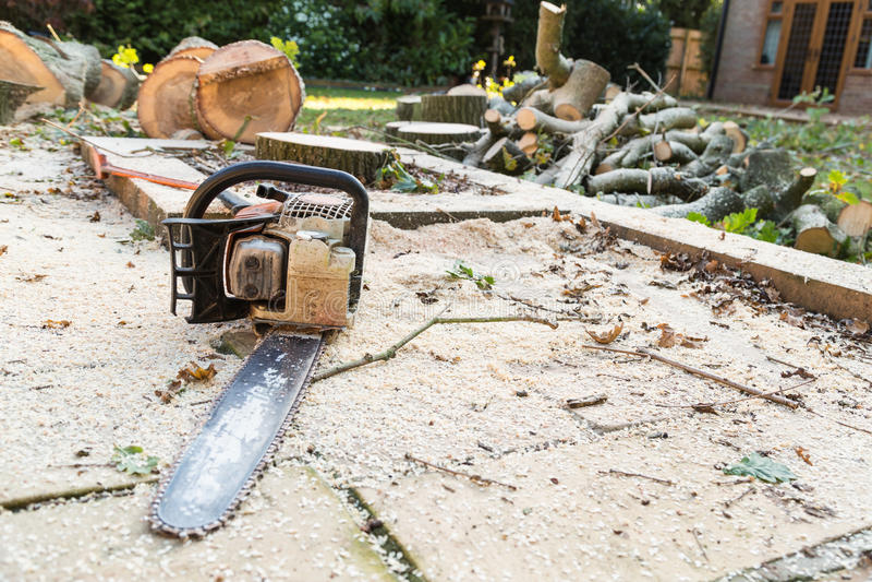 Motosierra en un patio cubierto con serrín fotos de archivo libres de regalías