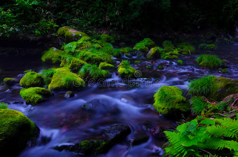 Download Mototaki River, Japan. stock photo. Image of landscape - 26498088