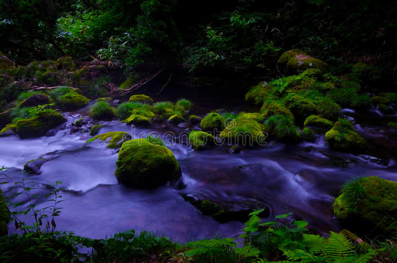 Download Mototaki River, Japan. stock image. Image of mototakihukuryuusui - 26498111