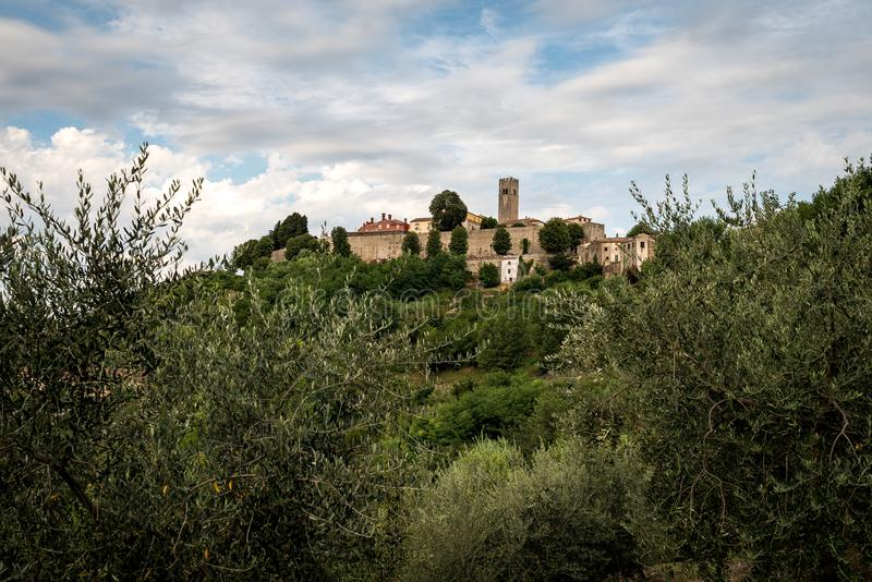Motovun sur les collines istrian croates photographie stock