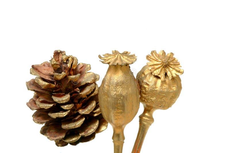Motriz do Natal imagens de stock