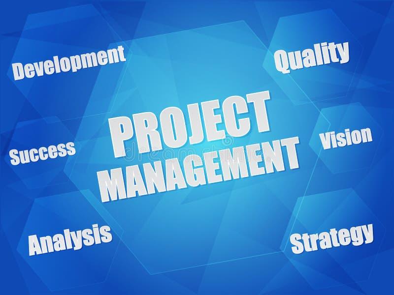 Mots de concept de gestion et d'affaires des projets dans les hexagones illustration de vecteur
