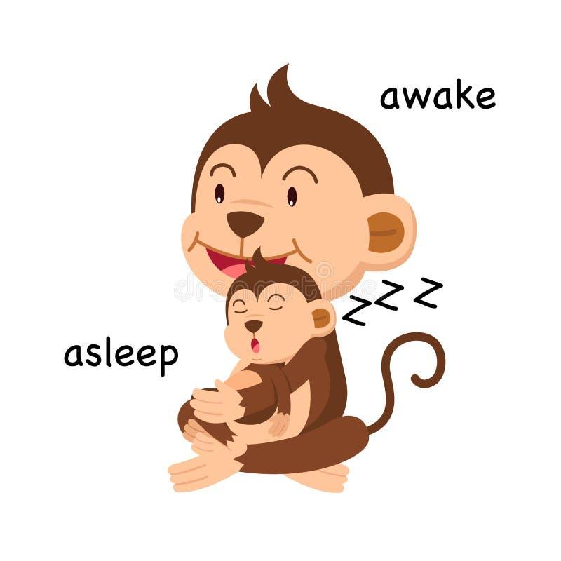 Motsatta ord sovande och vaken vektor stock illustrationer