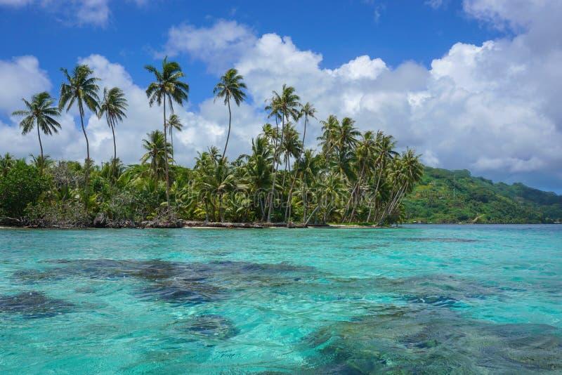 Motu de Polynésie française et île de Huahine de lagune image libre de droits