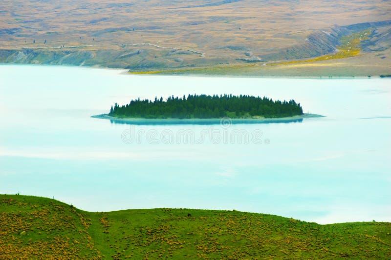 Motuariki wyspa na Jeziornym Tekapo fotografia royalty free