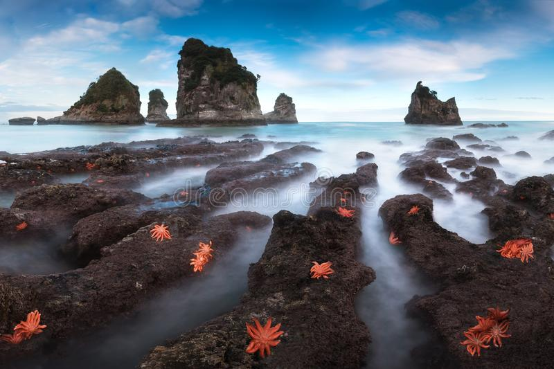 Motukiekie bay point. A long exposure of a wild, rugged nature scene from the west coast of New Zealand`s South Island. royalty free stock photos
