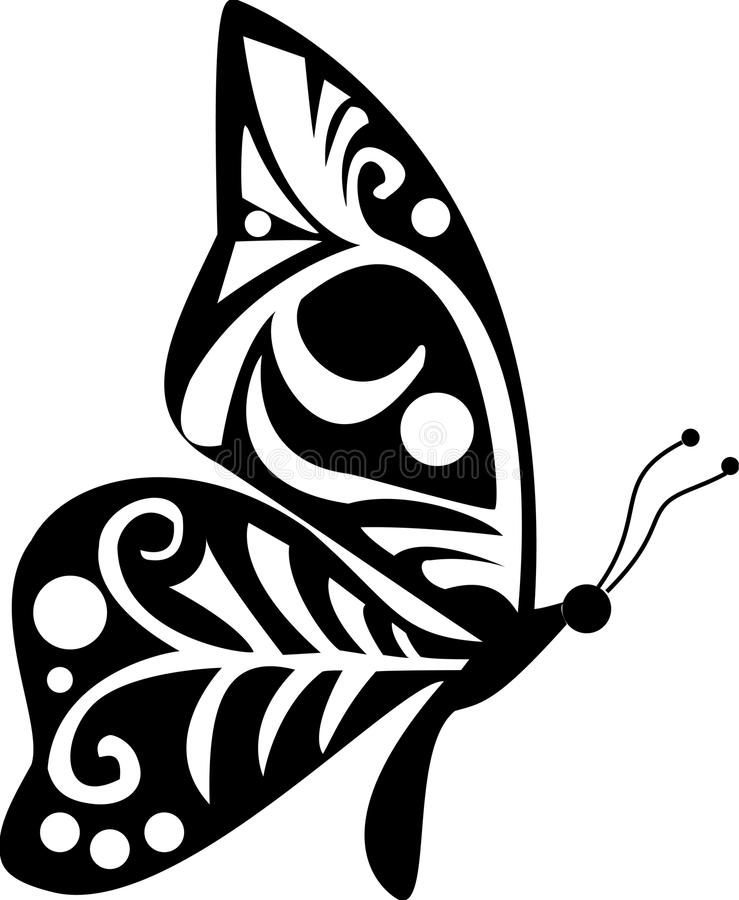 Motyl ilustracji