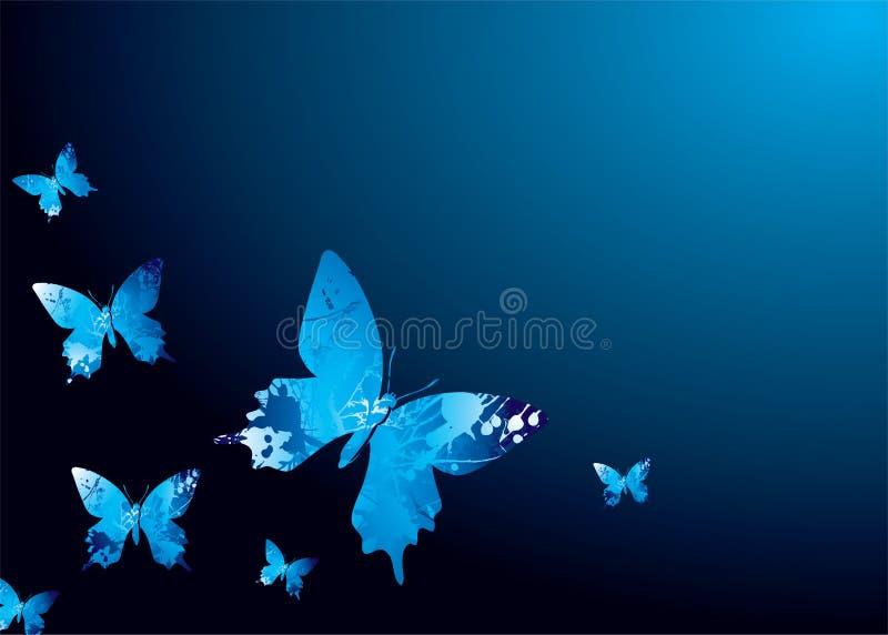 motyl chłodno ilustracja wektor