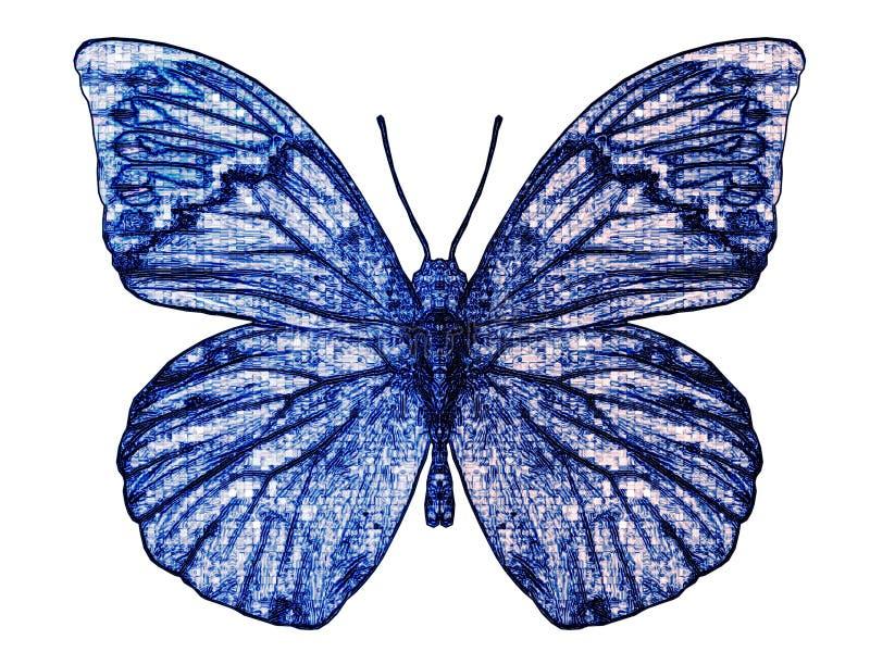 motyl ii zdjęcie stock