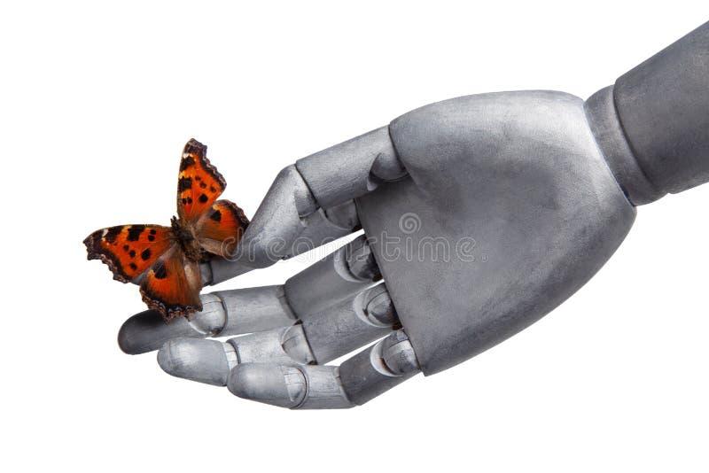 Motyl na ręce robot odizolowywający na bielu obraz stock