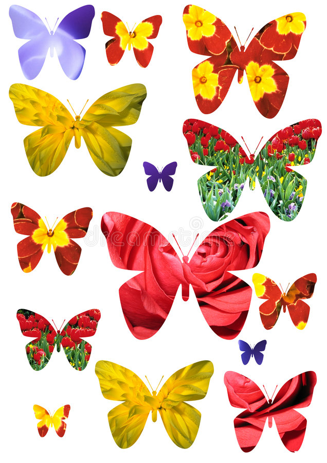 motyl odizolowane ilustracja wektor