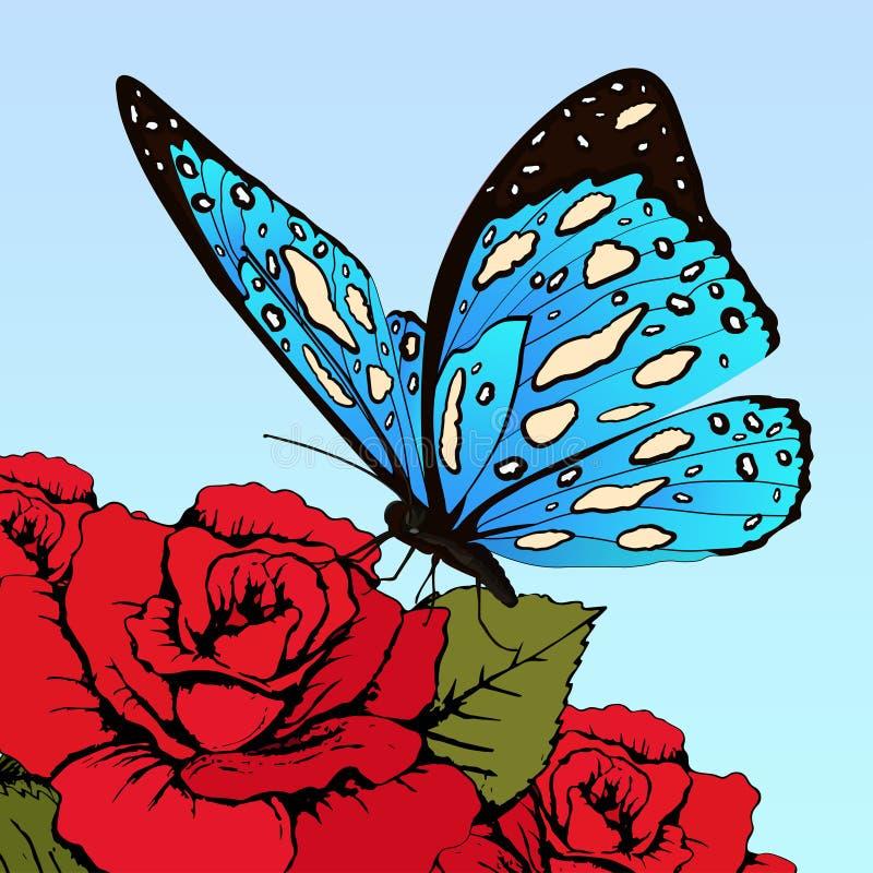Motyl z błękitnymi łaciastymi skrzydłami na kwiatach czerwone róże na niebieskiego nieba tle, wektorowy sztandar, karta, plakat,  ilustracji