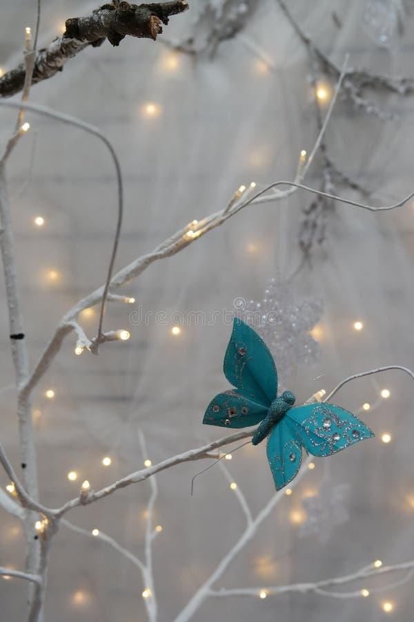 Motyla i chistmas światła obrazy royalty free