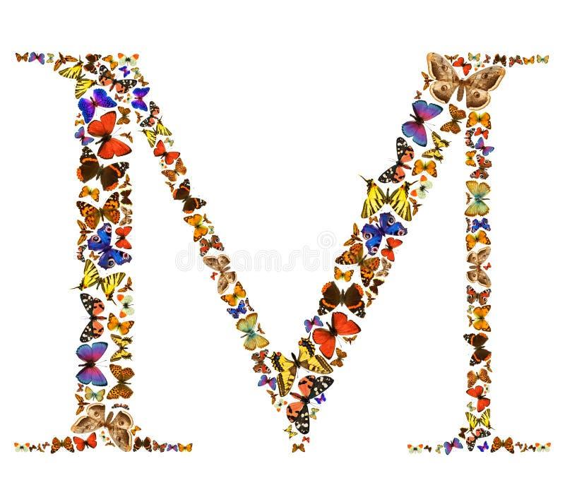 motyla list fotografia royalty free