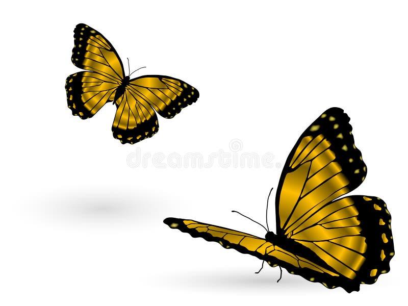 motyle złoci ilustracja wektor