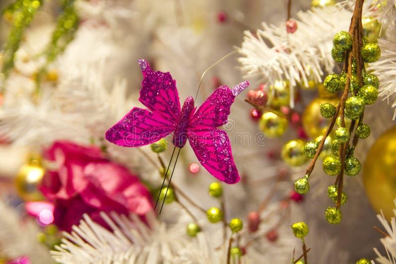 motyli boże narodzenia zdjęcie royalty free