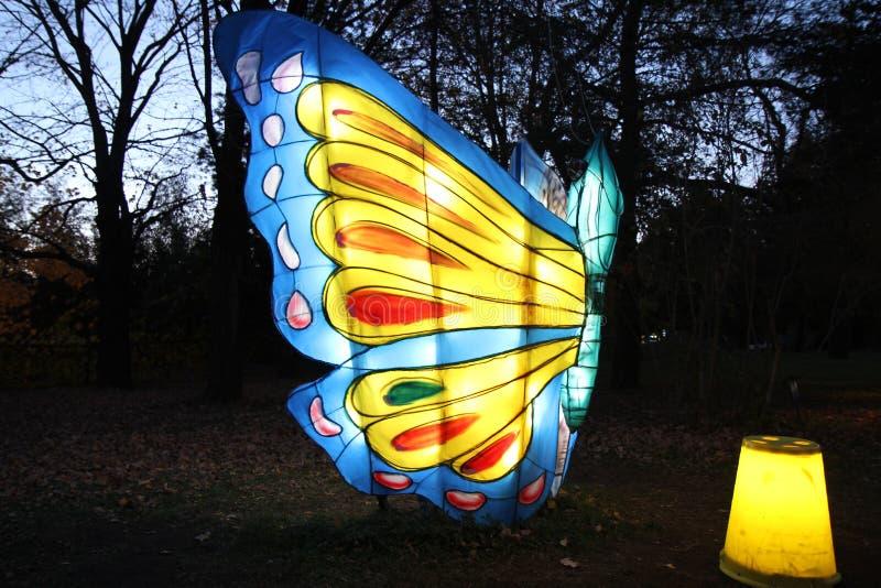 motyli gigant obraz stock