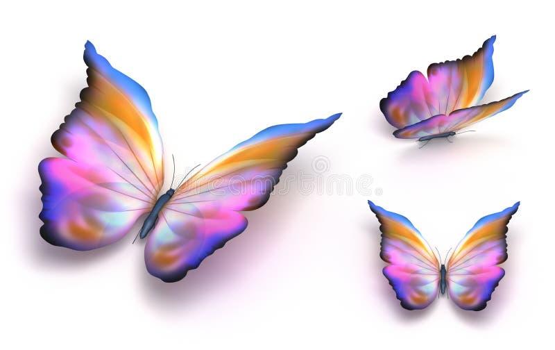 motyli kolorowy nadmierny biel royalty ilustracja
