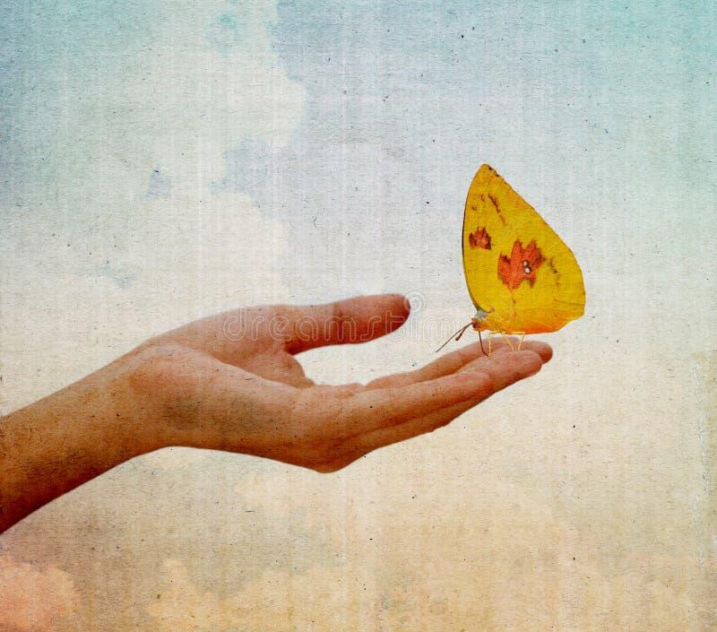 Motyli obsiadanie na dziewczyny ręce fotografia stock