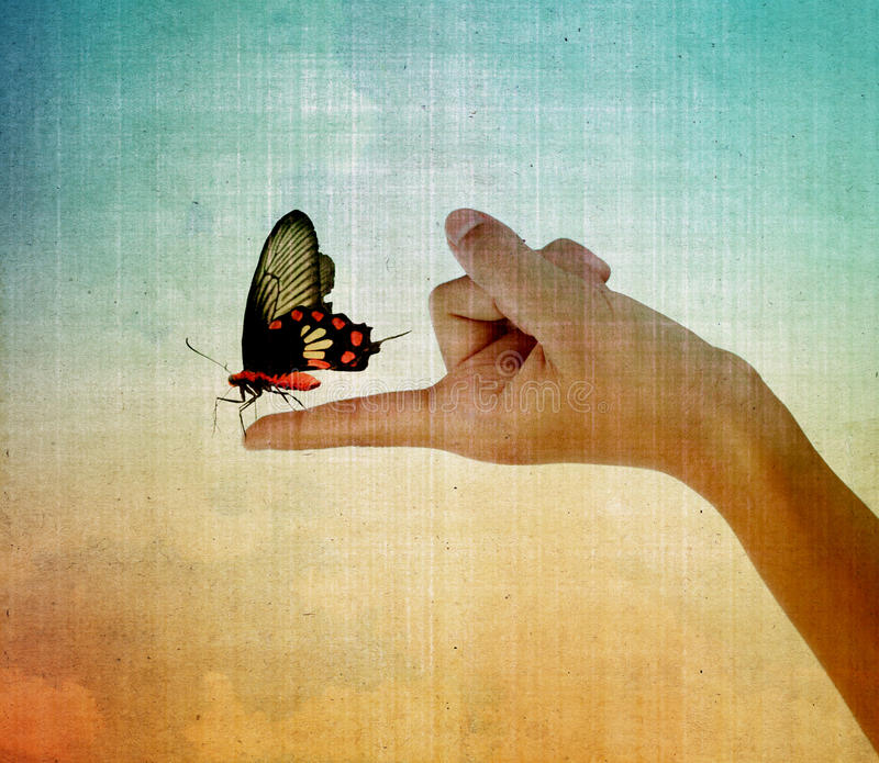 Motyli obsiadanie na dziewczyny ręce obrazy stock