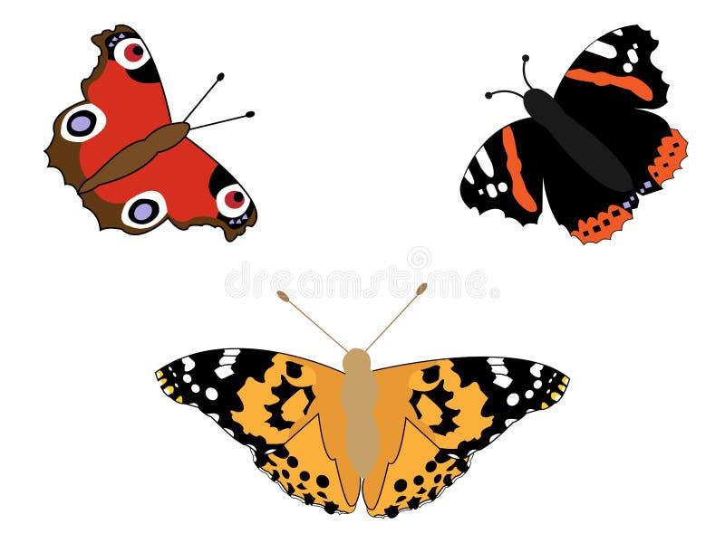 motyli set ilustracji