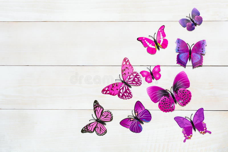 Motylia dekoracja obraz royalty free