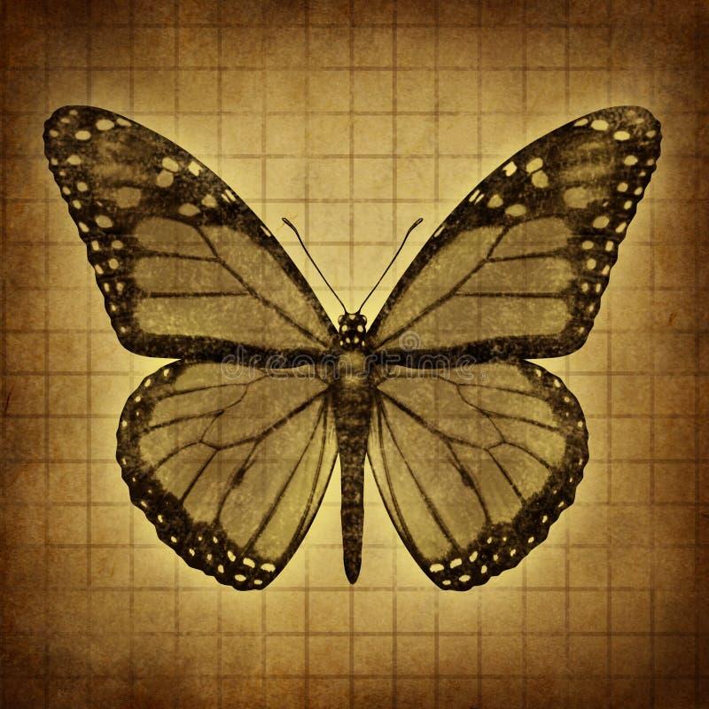 Motylia Grunge tekstura ilustracji