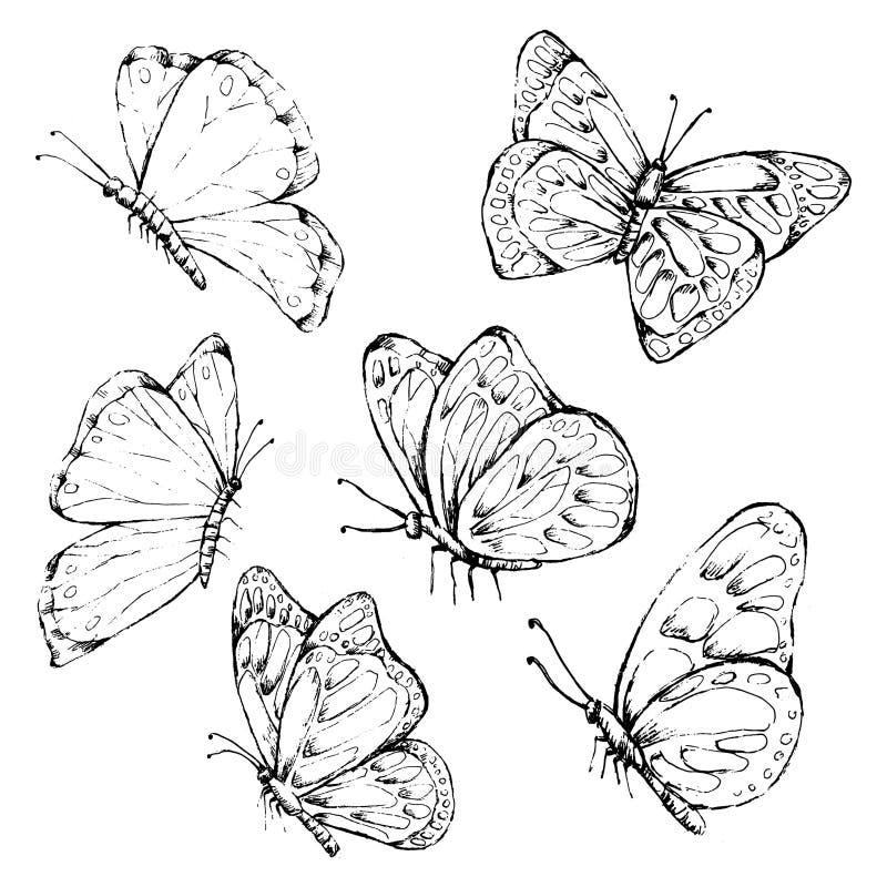 Motylia ręka rysujący Wektorowy Czarny i biały rocznika styl royalty ilustracja