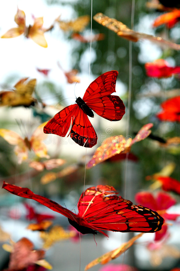 motylie wiszące ruchomych zdjęcia stock