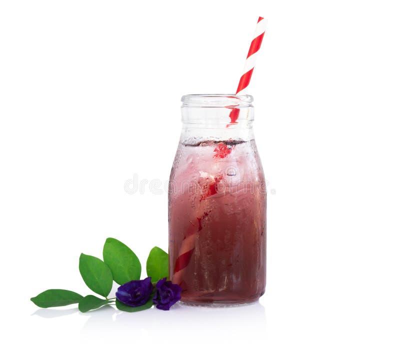 Motyliego grochu juce w trawy butelce z li?ciem i kwiatem na bia?ym tle, zielarski dink dla zdrowego poj?cia fotografia stock