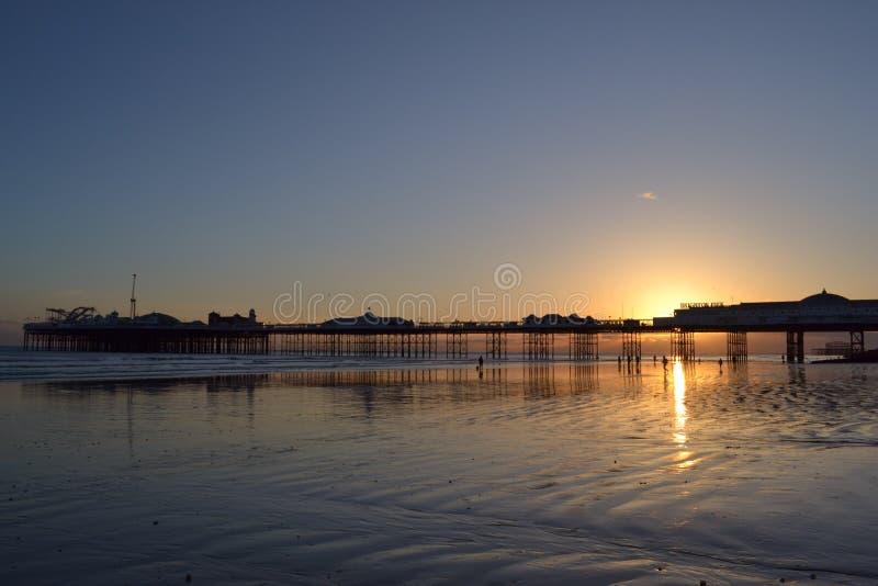 Mouettes de pilier de Brighton image libre de droits