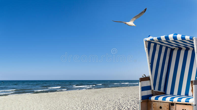 Mouettes, plage et une chaise de plage photos libres de droits