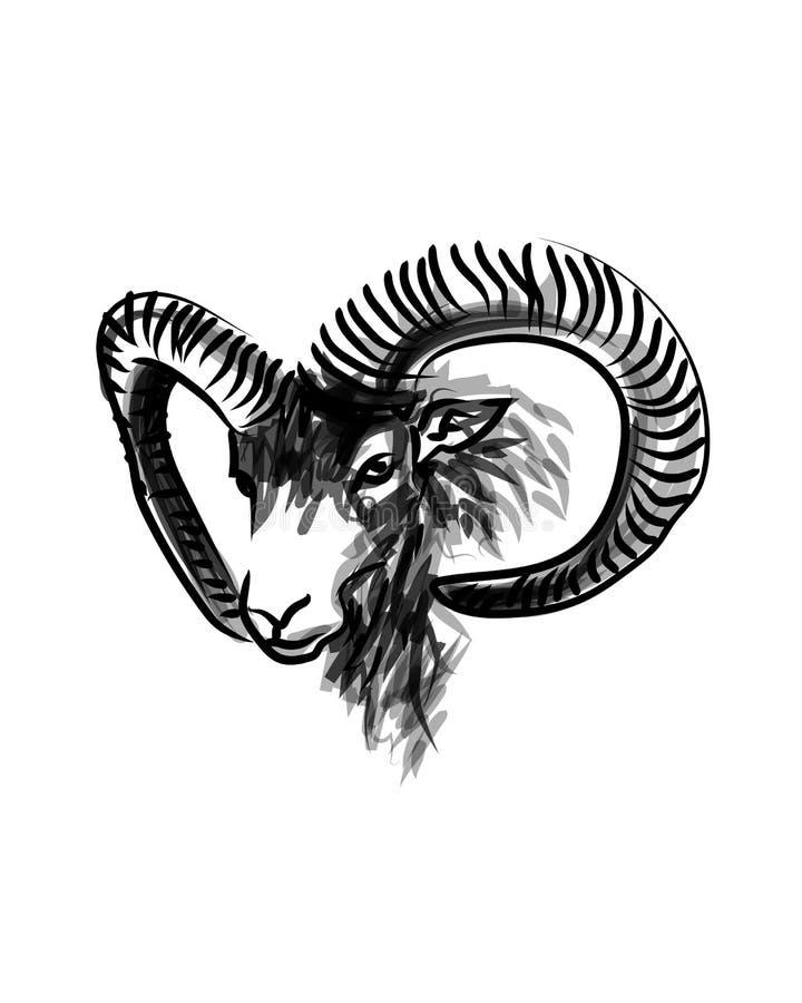 Mouflon головы эскиза чернил вектора бесплатная иллюстрация