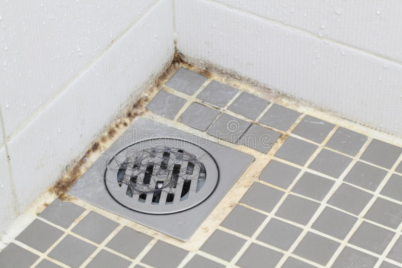 Moulage dans la salle de bains photo libre de droits