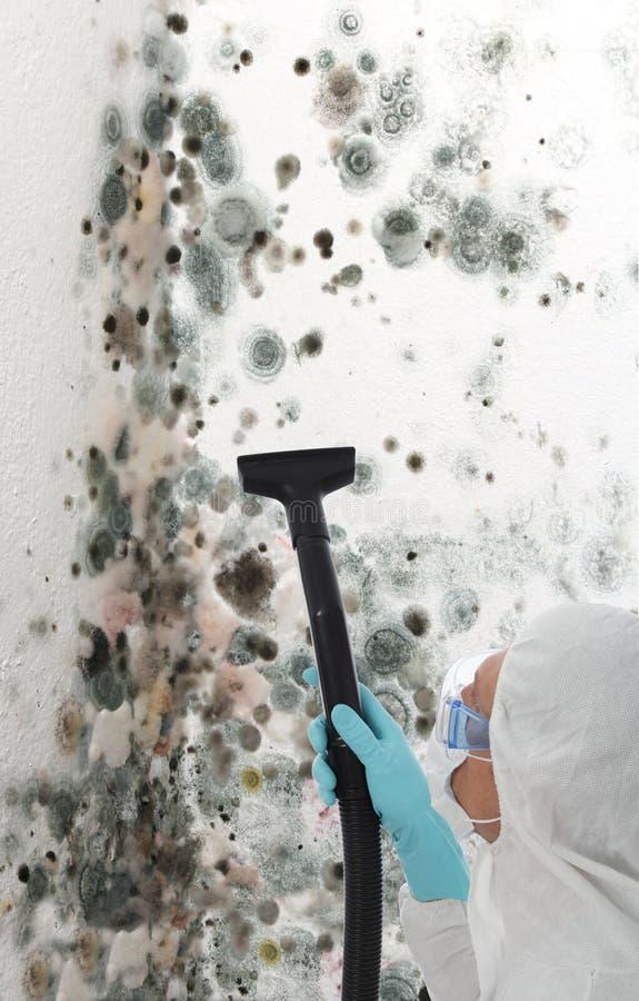 Moulage professionnel de nettoyage outre d'un mur image libre de droits